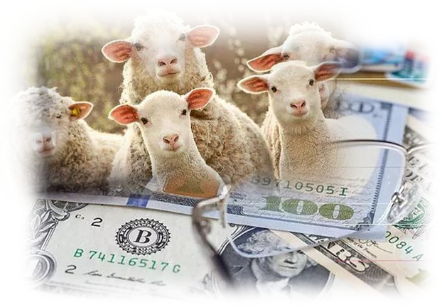 2020年1月银行信用卡羊毛活动