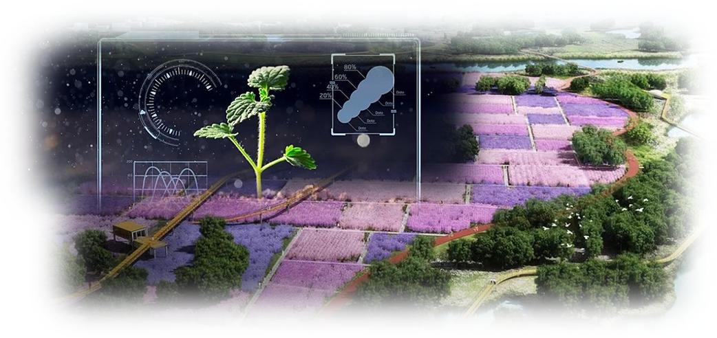 养卡理财创业思考探索现代化农业产业园运营与发展思路